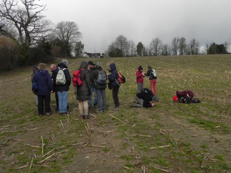 Picture of people in a field in Henfield